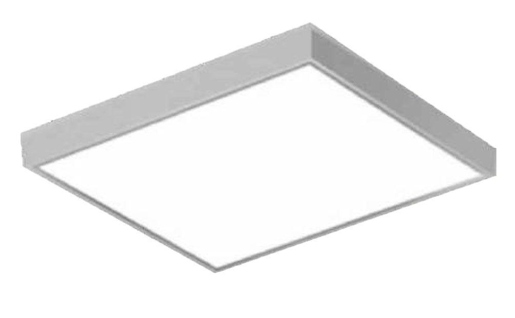 Surface & Panel Lights