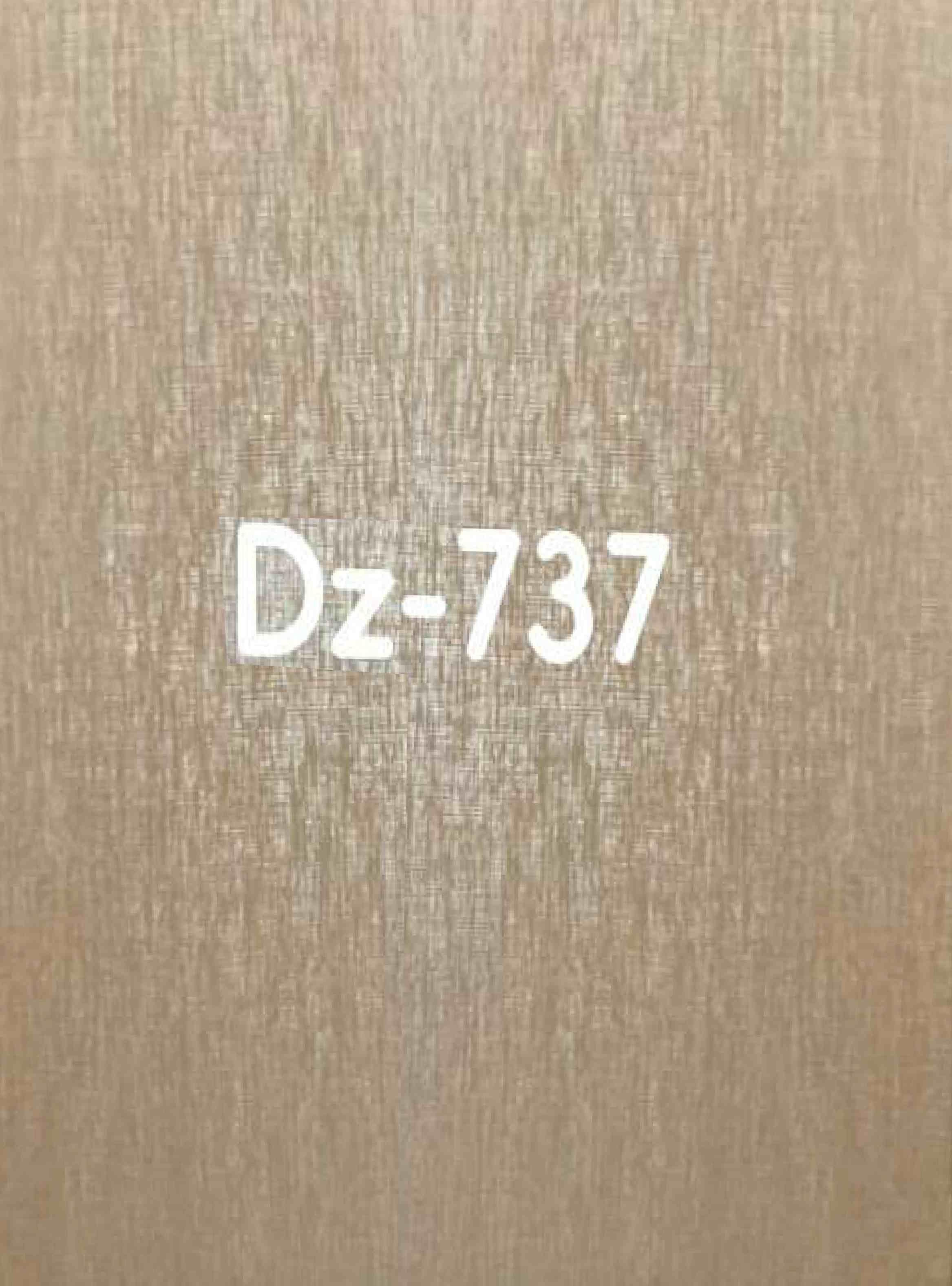 pvc panel - dz-737